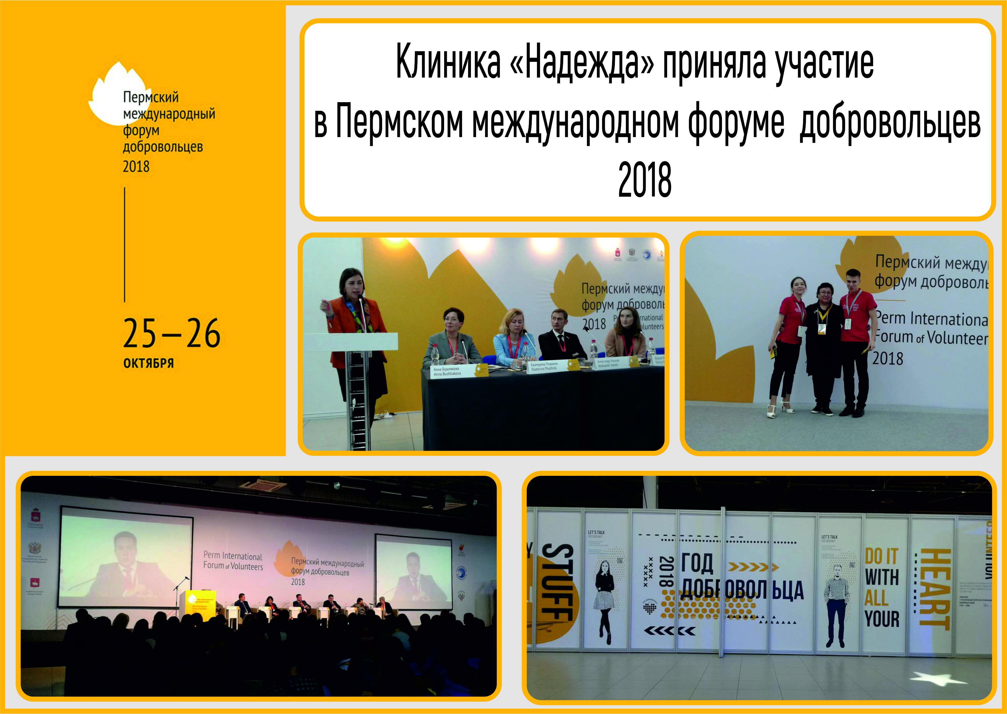 «Пермский международный форум добровольцев 2018»